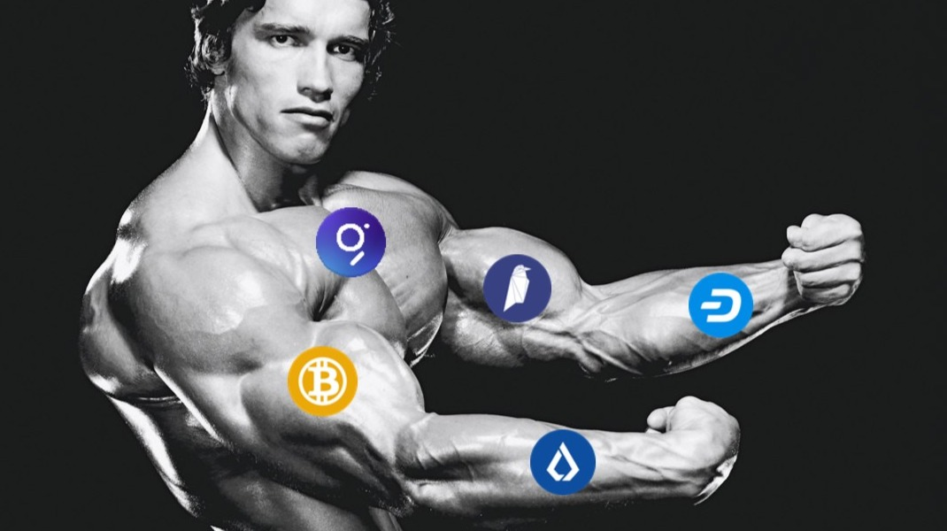 Five Biggest Altcoin Gainers From February 8th to 15th