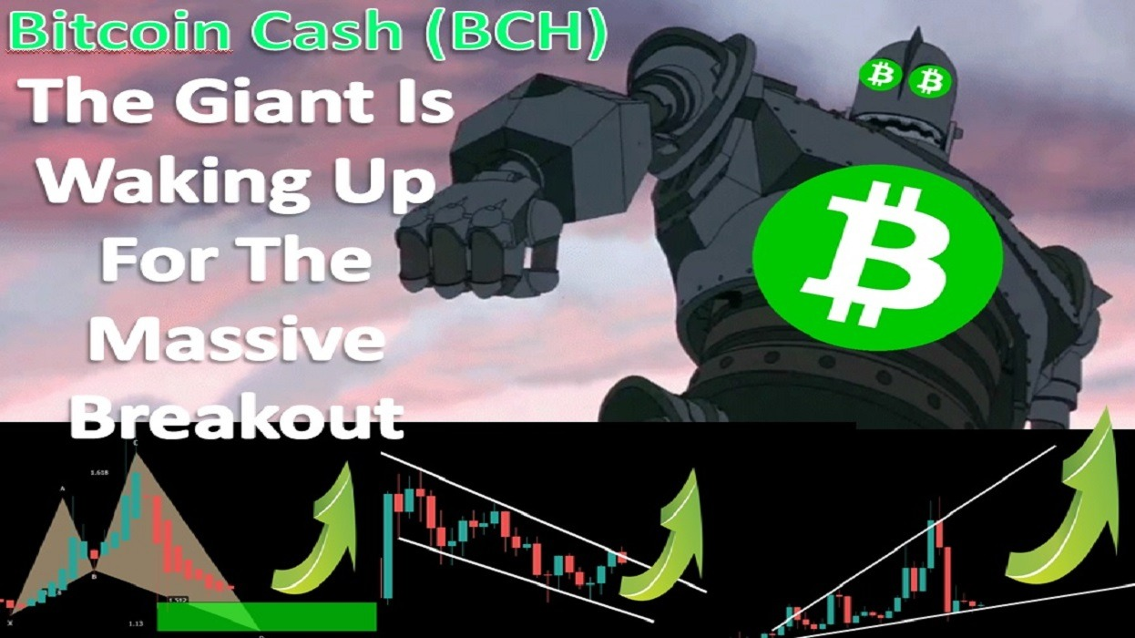 Bitcoin Cash (BCH) | The Giant Is Waking Up For The Massive Breakout