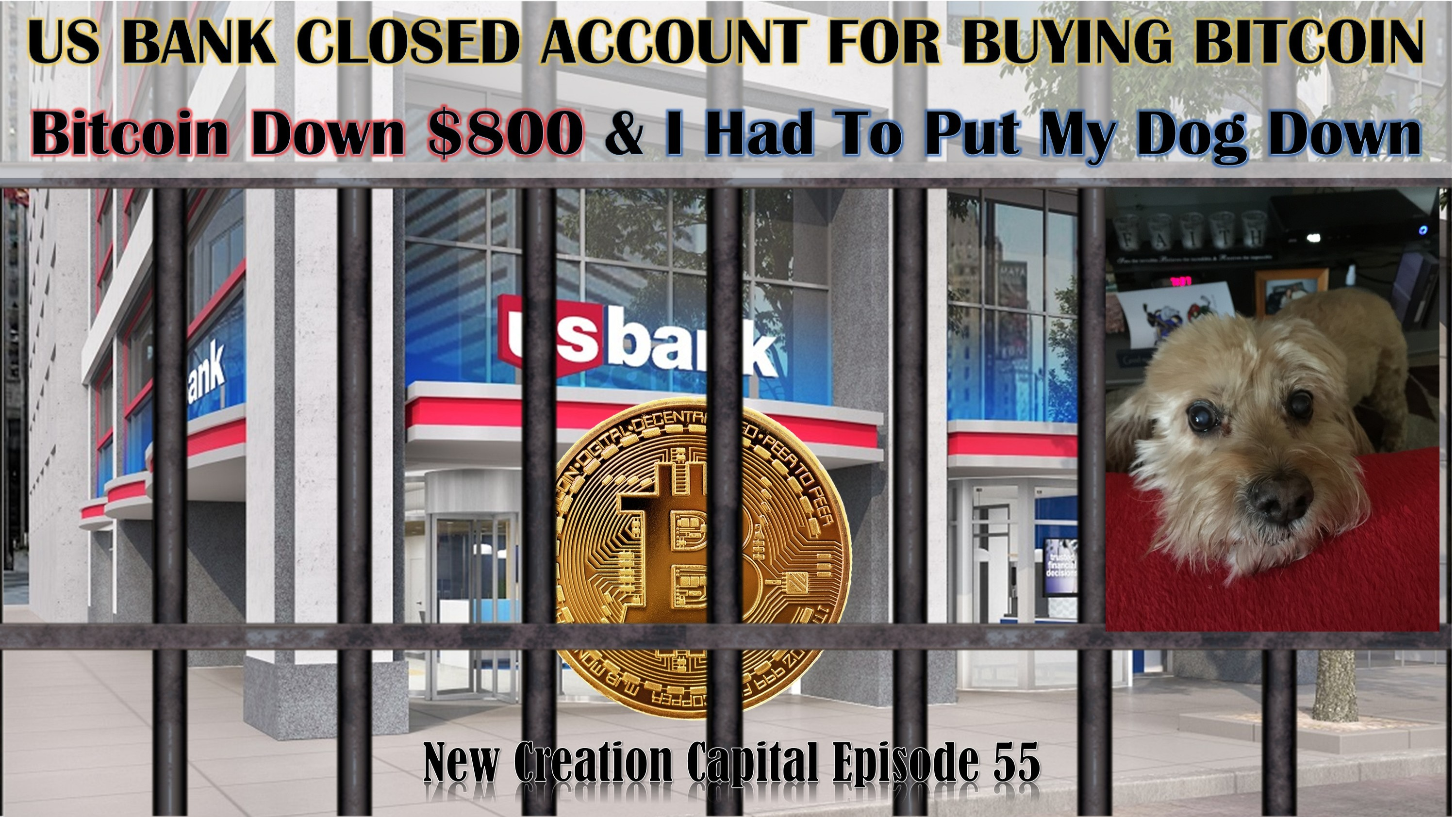 Episode 55: US Bank Closed Account For Buying Bitcoin Which is Down $800 & I Had To Put My Dog Down
