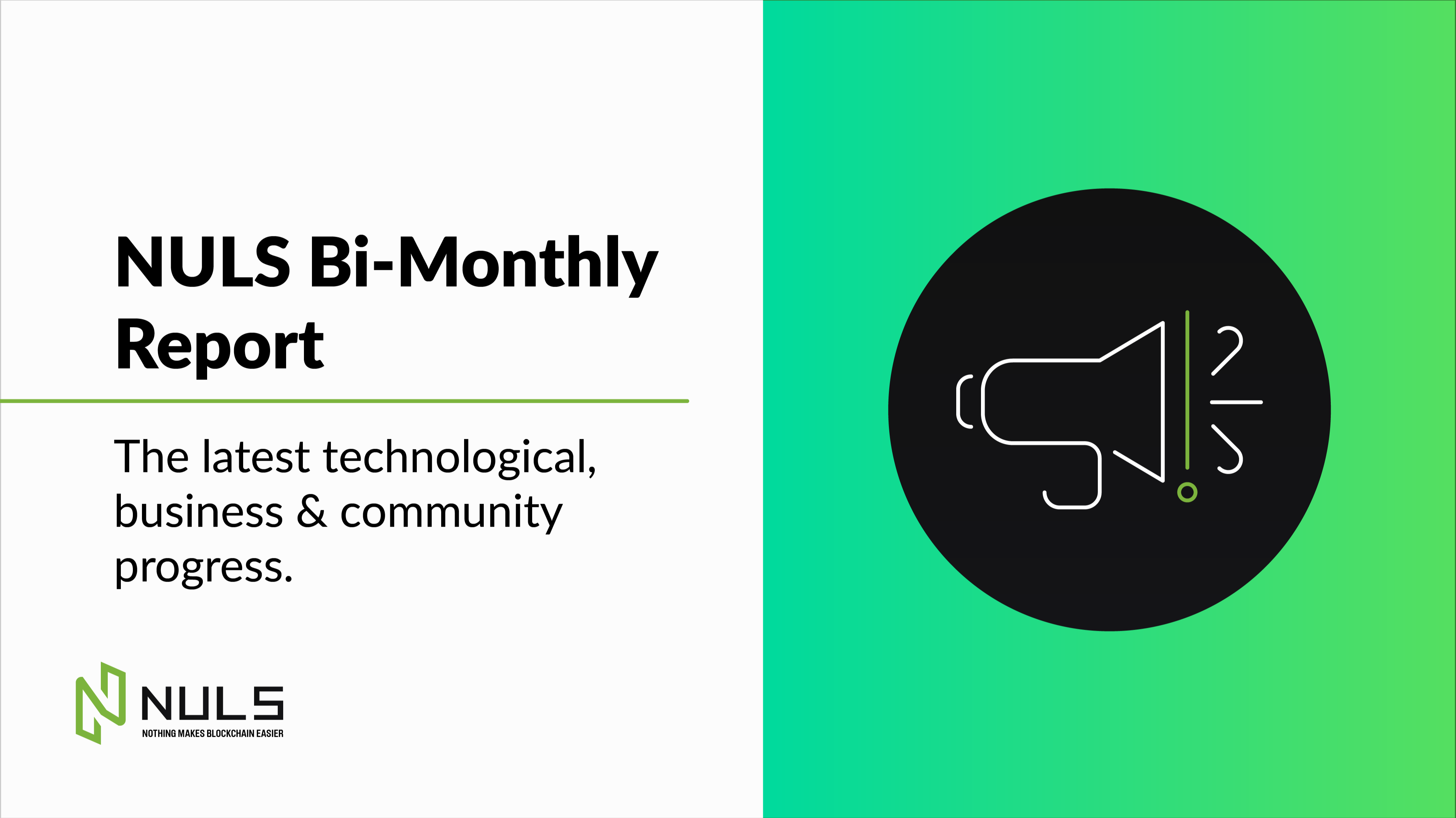 NULS Bi-Monthly Report — First Half of January 2021 Briefing